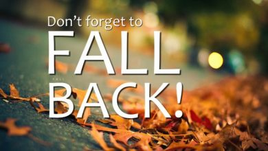 fall back - boredinde
